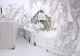 Зима-холода