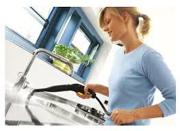 Чистота и дезинфекция дома: какой пароочиститель выбрать?