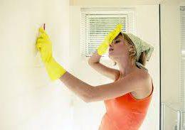 Как вывести грибок из ванной комнаты?