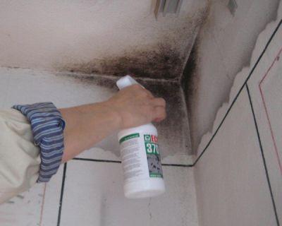Устранение причин возникновения сырости стен и перекрытий зданий