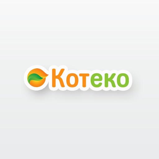 Отопление дома твердотопливным котлом от производителя Koteko.com.ua.