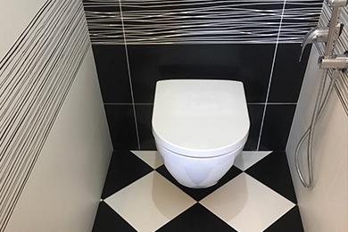 Ремонт туалетных комнат в Москве