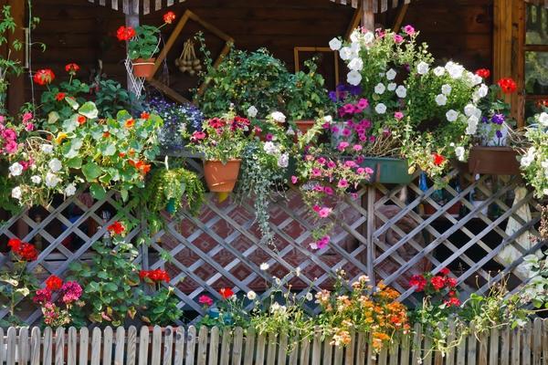 Как украсить забор несколько красивых идей