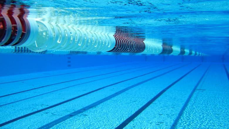 Проект бассейнов