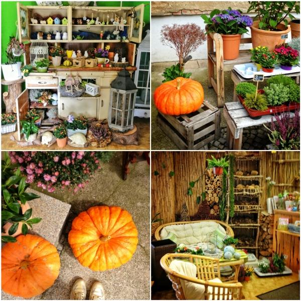 Красивое оформление цветочного магазина