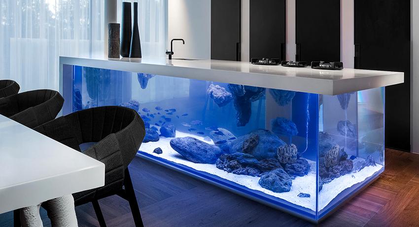 Герметик для аквариума: надежный и незаменимый помощник