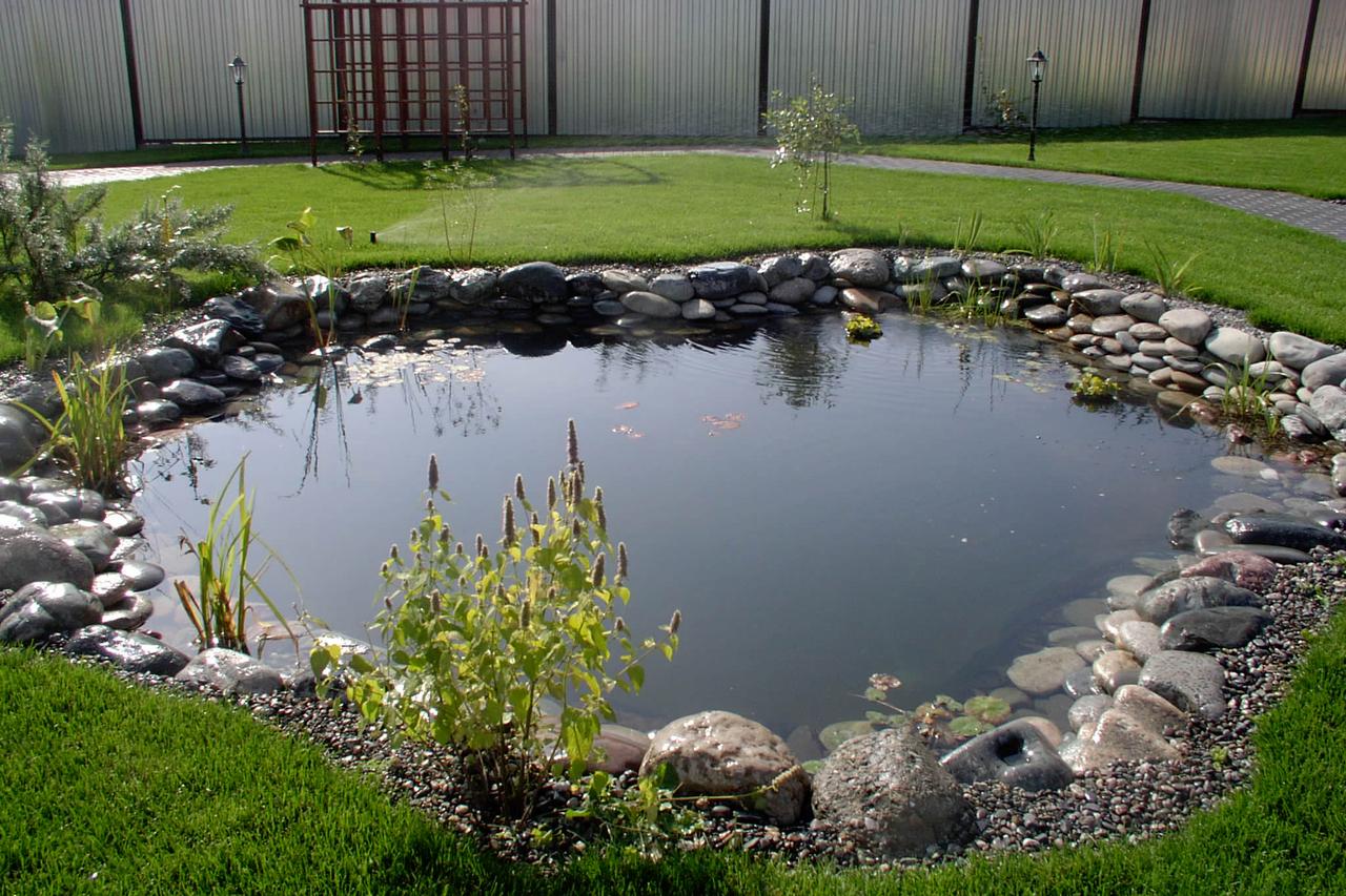 Декоративный пруд — ландшафтный дизайн