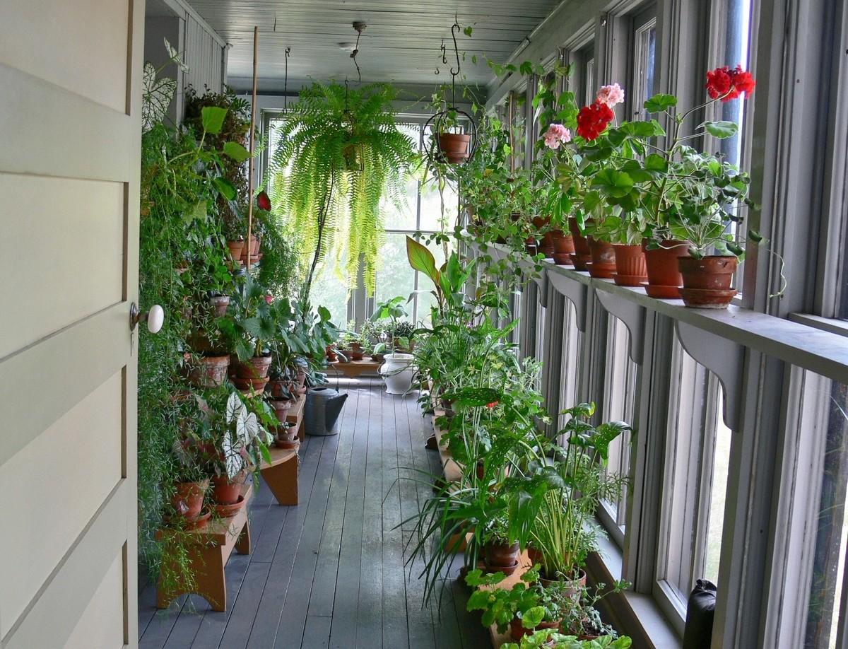 Как устроить сад на балконе?