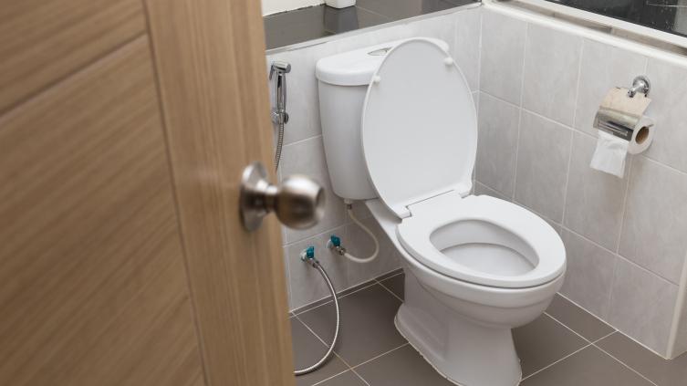 Что такое гигиенический душ и как его установить?