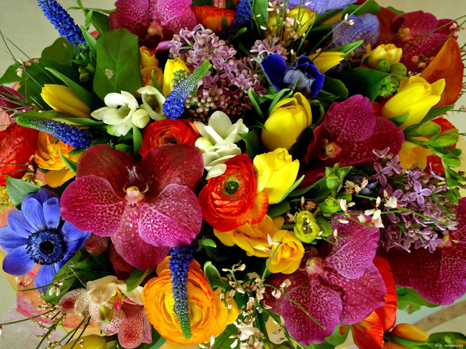 Мир цветов в сервисе Flowers UA
