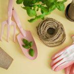 Какую зелень посадить дома для салатов: вкусный сад на подоконнике